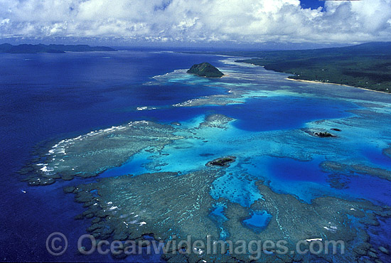 Aerial view of fringing Coral reef. Taveuni Island, Fiji Photo - Gary Bell