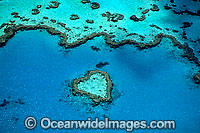 Aerial Heart Reef photo