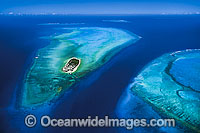 Aerial of Heron Island Photo - Gary Bell