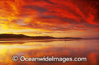 Seascape Coffs Harbour Photo - Gary Bell