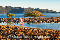 Hayman Island Whitsunday Islands image