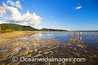 Beach combing Hayman Island photo