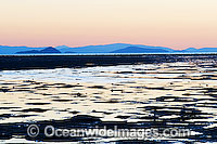 Hayman Island low tide photo
