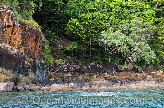 Spectacular rocky coastline during low tide at Hook Island, Whitsunday Islands, Queensland, Australia Photo - Gary Bell