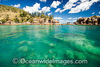 Coral reef coastal Whitsundays Photo - Gary Bell
