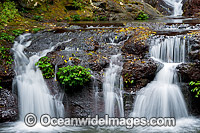 Elabana Falls Lamington National Park image
