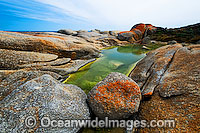 Trousers Point Flinders Island Photo - Gary Bell