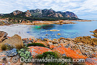 The Dock Flinders Island Photo - Gary Bell