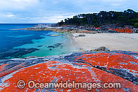 Trousers Point Cove Flinders Island Photo - Gary Bell