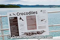 Estuarine Crocodile Warning Sign Photo - Gary Bell