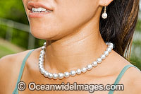 Oyster Pearl string necklace Photo - Gary Bell
