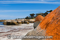 Sawyers Beach Flinders Island Tasmania Photo - Gary Bell