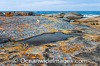 Holloway Point Flinders Island Tasmania Photo - Gary Bell