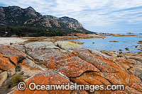The Dock Flinders Island Tasmania Photo - Gary Bell