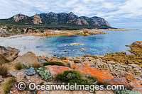 Flinders Island Tasmania seascape Photo - Gary Bell