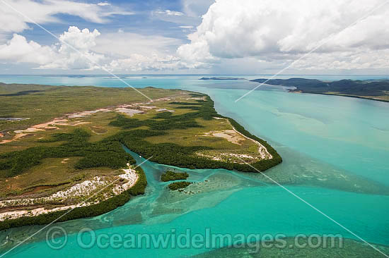 Aerial view of Horn Island mangrove inlet and surrounding seagrass beds. Torres Strait, Queensland, Australia Photo - Gary Bell
