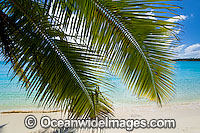 Tropical beach Cocos Islands Photo - Gary Bell