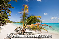 Coconut beach Cocos Islands Photo - Gary Bell
