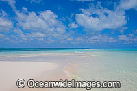 Tropical beach Photo - Gary Bell