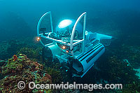 Submarine underwater reef Photo - Andy Murch
