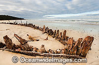 Woolgoolga Shipwreck Photo - Gary Bell