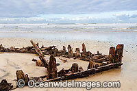 Shipwreck Buster Photo - Gary Bell