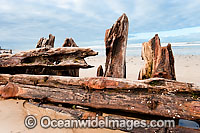 Buster Shipwreck Photo - Gary Bell