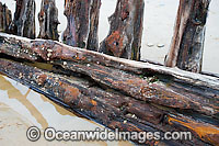 Shipwreck Woolgoolga Photo - Gary Bell