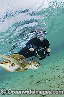 Photographer with Green Turtle Photo - Justin Gilligan