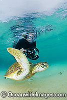 Underwater Photographer with Turtle Photo - Justin Gilligan