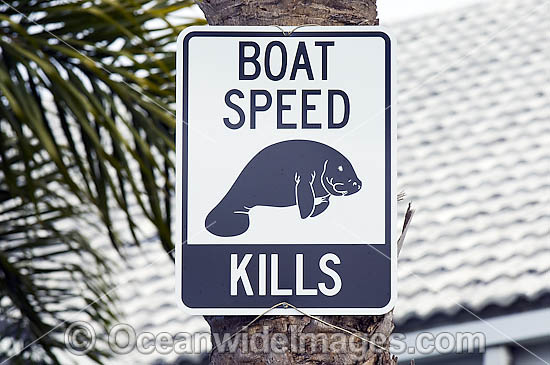 Sign reminding boaters in Crystal River, Florida, USA, of the presence of manatees and the need to obey local boating laws.