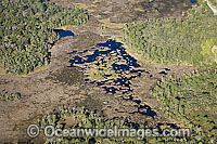 Aerial of Crystal River Florida Photo - Michael Patrick O'Neill