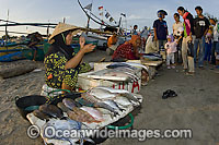 Fish Markets Indonesia