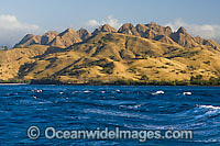 Komodo Island Photo - Michael Patrick O'Neill