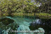 Crystal clear river Brazil stock photo