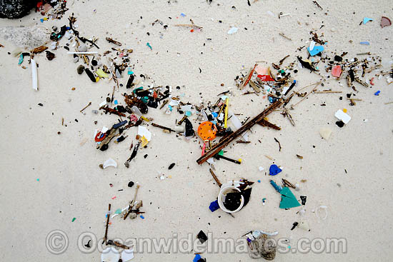 Marine pollution rubbish trash garbage comprising of small plastic pieces, washed ashore by tidal movement on a remote tropical island beach. Cocos (Keeling) Islands, Indian Ocean, Australia Photo - Inger Vandyke
