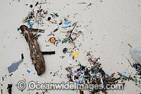 Pollution washed ashore image