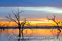 Lake Menindee sunrise photo