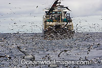 Trawler Fishing Photo - Chris & Monique Fallows