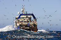 demersal Trawl Fishing photo