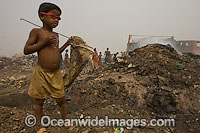 People scavenging at Indian dumpsite Photo - Chris and Monique Fallows