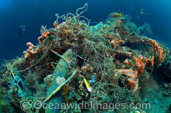 Fishing line garbage pollution Stock Photos