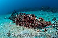 Rope litters coral reef Photo - Michael Patrick O'Neill