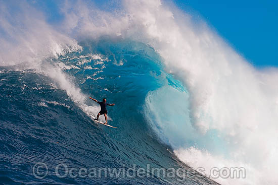 A tow-in surfer drops to the curl of Hawaii's big surf at Peahi (Jaws) off Maui, Hawaii, Pacific Ocean. Photo - David Fleetham