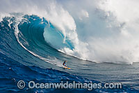 Surfer in wave curl Hawaii image