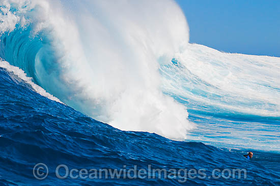 Just the head of this tow-in surfer is visibile as he drops into Hawaii's big surf at Peahi (Jaws) off Maui, Hawaii. Photo - David Fleetham