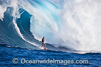 Tow-in surfer Hawaii image
