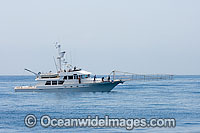 Swordfish fishing vessel Photo - David Fleetham