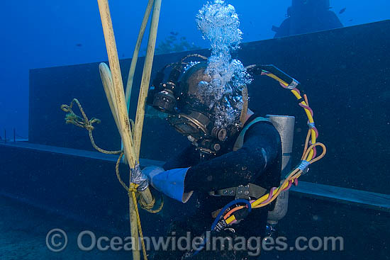 Commercial Diving photo