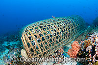 Traditonal Fish trap Photo - David Fleetham